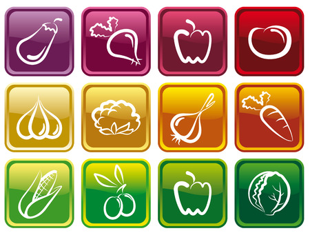 Vegetable buttons Stock Vector - 6636181