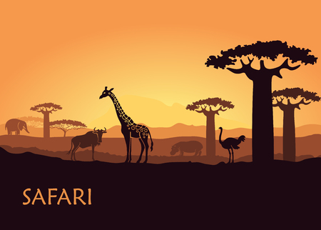 Wild animals in the backdrop of the African sunset.