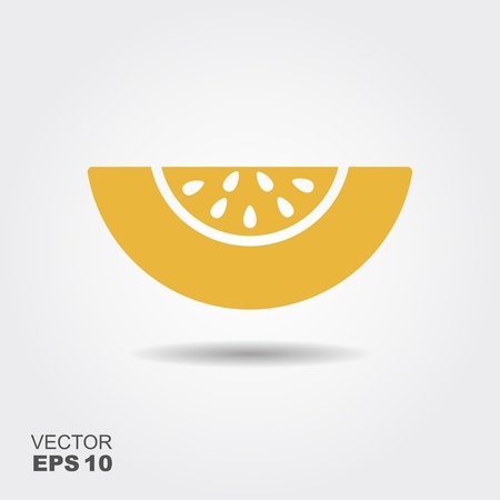 Illustration of melon flat icon with shadow