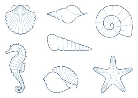 Outlines of sea shells, seahorse and starfish Illustration