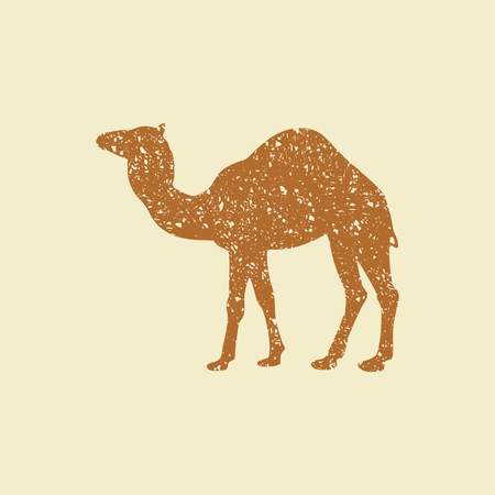 Camel silhouette vector illustration. Flat icon in grunge style