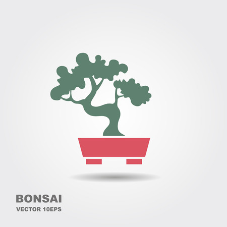 Traditional Japanese bonsai. Flat vector icon with shadow