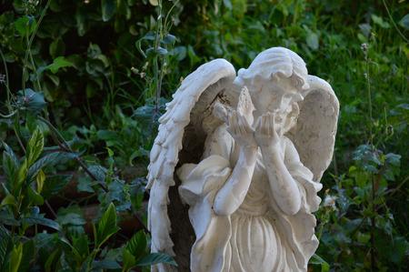 生い茂ったヤードで風化の天使像。