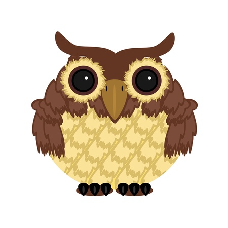 owl on white background Vector
