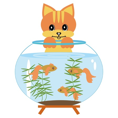 cat with aquarium and fish Vector