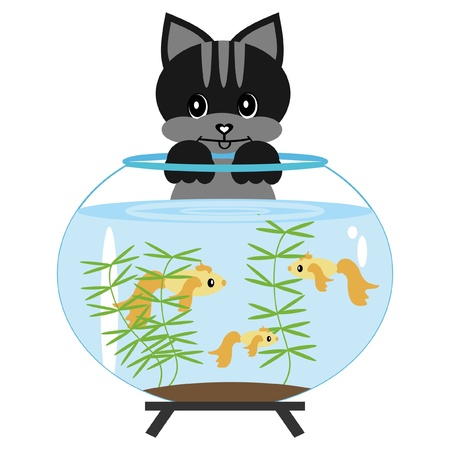 cat with aquarium Vector