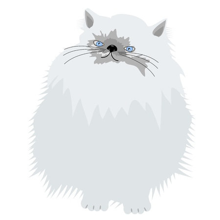nice persian cat on white Stock Vector - 12364102
