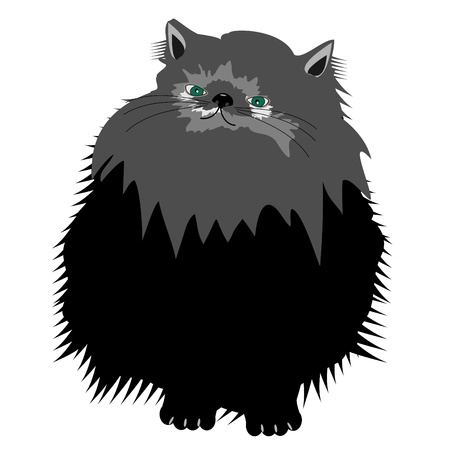 nice persian cat on white Stock Vector - 12364103