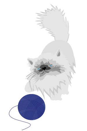persian cat with clew Stock Vector - 12364436