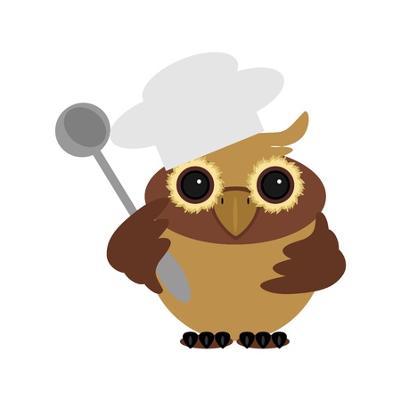 nice owl cook on white background