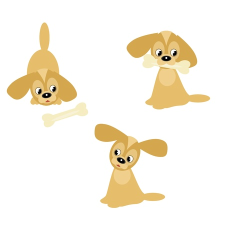 nice little dogs on white Vector