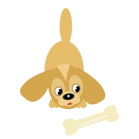 nice little dog with bone Stock Vector - 12364639