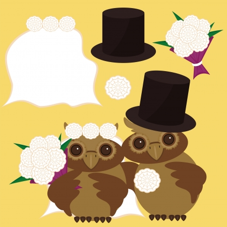 nice owls bridegroom and bride Vector