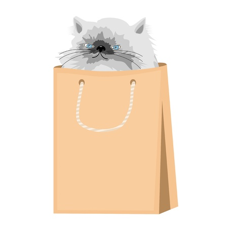 nice persian cat in paper bag Stock Vector - 16242004