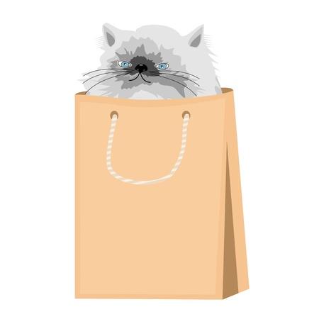 nice persian cat in paper bag Stock Vector - 16242004