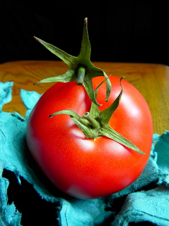 contradictory: Two tomato sepals fighting each other. Food concept for contradictory nutritional information.