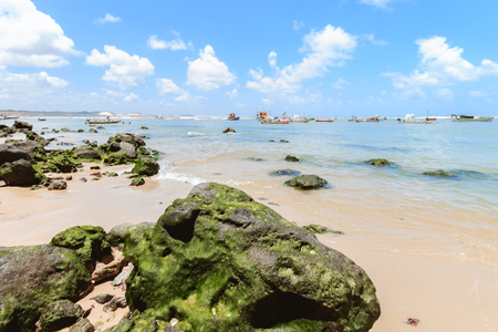 pipa: Pipa Beach is one of the most famous beaches of Brazil