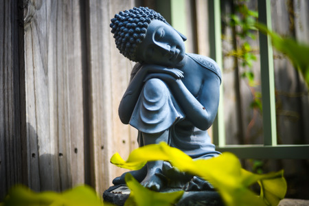 Sitting praying buddha statue