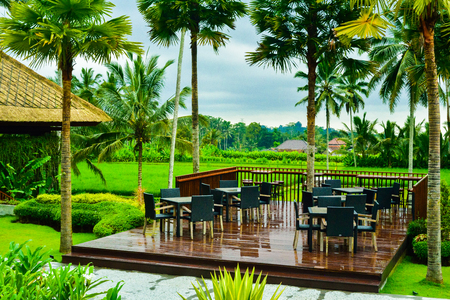 Gorgeous green romantic view of outdoor dining in rice terrace field with tall coconut palm trees for children school holiday adventure and honeymoon vacation in South East Asia