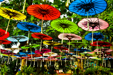 Local traditional colorful paper umbrella in the rain forest tropical garden for local party and social gathering