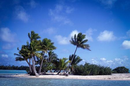 Polynesian atoll motu in Fakarawa photo