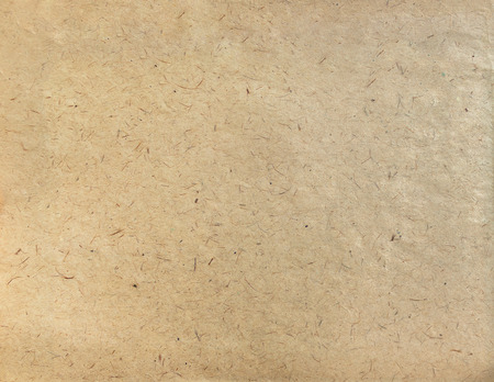Textured Craft Paper Background Texture Stock Photo Picture And