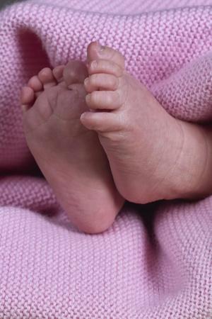 babyvoetjes: baby voeten