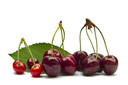 freshly cherries isolated on white background Stock Photo