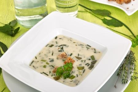 water thyme: En primer plano, un plato blanco con sopa de hierbas plenamente de su lado cajero se encuentran diferentes hierbas frescas