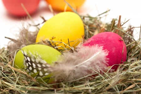 Three Easter eggs in a nest  In the background other eggs on white Stock Photo - 16029854