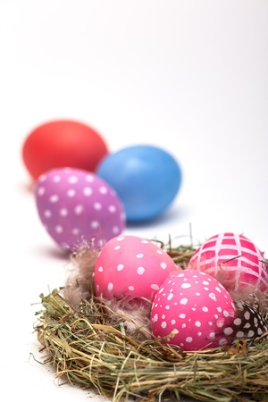 free plate: Three Easter eggs in a nest  In the background three other eggs on white