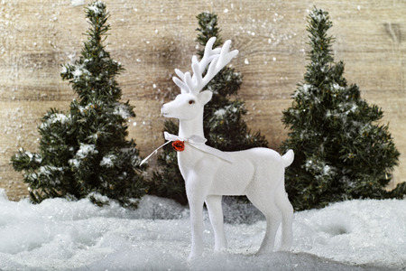 White Deer with bells and red ribbon forest backdrop