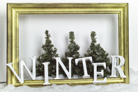Winter letter picture frame and forest setting Stock Photo