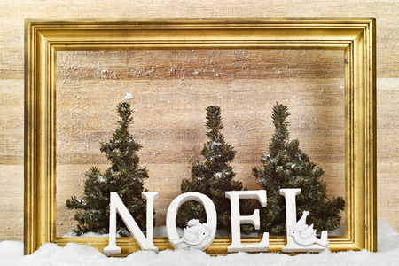 Noel letters picture frame  and forest setting Stock Photo