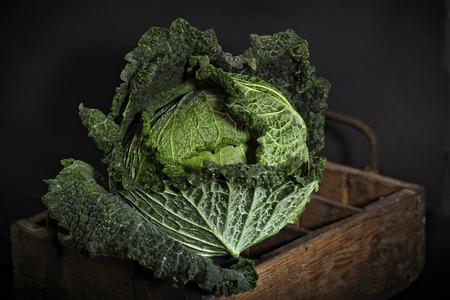 savoy cabbage: Savoy cabbage against dark background Stock Photo