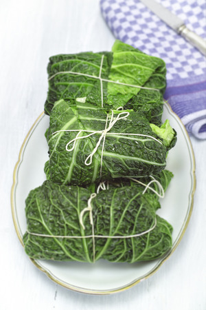Savoy cabbage rolls on a white plate