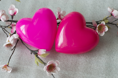 saint valentine   s day: two lovers heart in the flowers of sakura Stock Photo