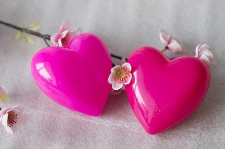tender sentiment: two lovers heart