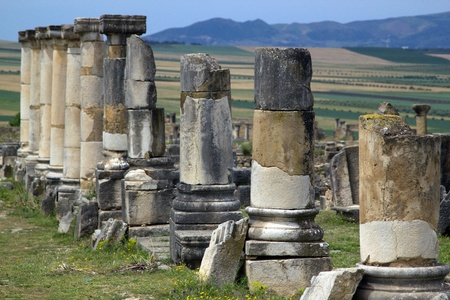 declared: Old Roman Columns located in Volubilis, Morocco. Volubilis is declared as a UNESCO World Heritage site.