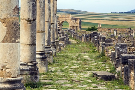 declared: Old Roman Columns and Citry Entrance, Volubilis, Morocco.  Volubilis is declared as a UNESCO World Heritage site.