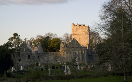abbey: Side view Old Muckross Abbey located in Killarney, Ireland