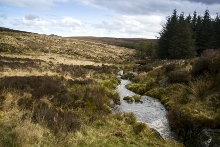 Small river  landscape inside Wicklow Park and Sally Gap, Ireland photo