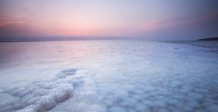 Salty stone at the coast of dead sea  photo