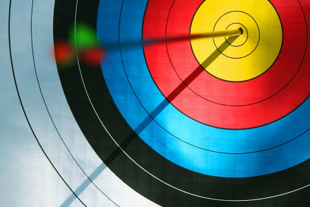 Bulls eye  archery  photo