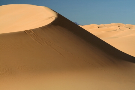 nomad: Perfect dune in Sahara - Niger