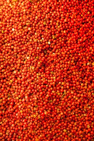 Nice background out of red peppercorns  Stock Photo