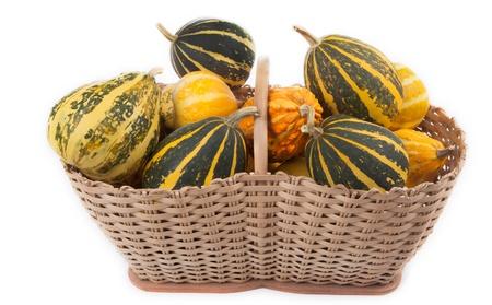 Beautiful smal decorative pumpkins in a basket