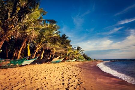 Boats on a Tropical Beach, Mirissa, South Sri Lanka photo
