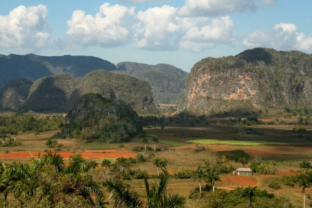 Vinales valley is known for magnificant landscape and finest tobacco. Stock Photo - 19992296