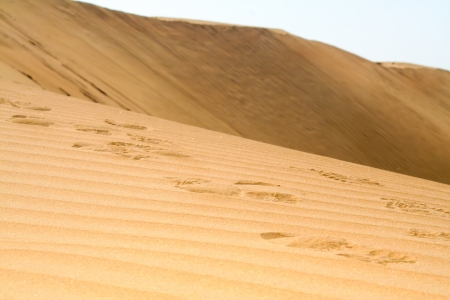 Footsteps in a desert, with huge dune as a background